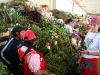 you are sick? in mercado 10 de Agosto you can find all kind of herbs to cure yourself