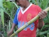sugar cane prepared by Maduardo