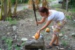that's how you open a coconut when wanting to save its juice
