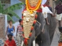 Festivals and Celebrations in Varkala